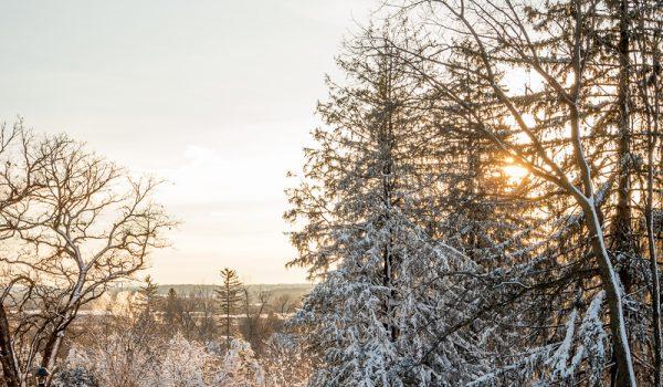 snow_016-X3
